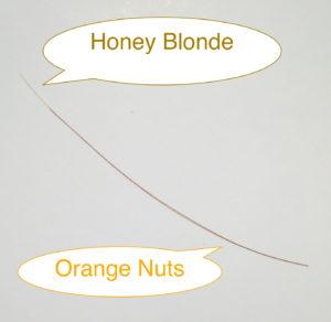 カラーミーオーガニックオレンジナッツとハニーブロンドの染まり方の例画像